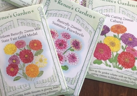 Zinnia seed packets